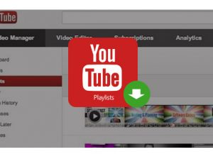Download YouTube Playlists & Channel with Free YouTube Downloader